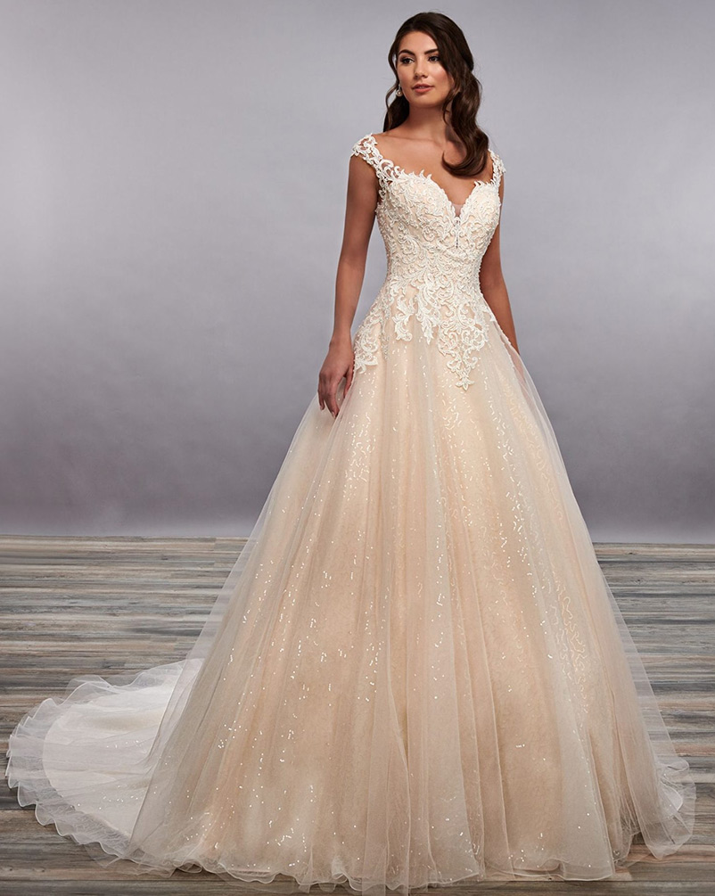 wedding dress a-line v-neck